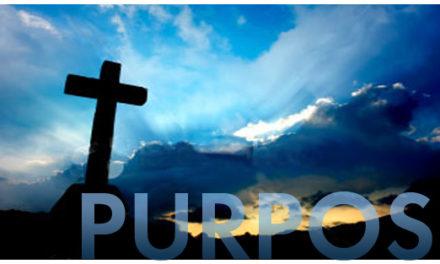 Lost Purpose
